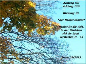 Herbstwarnung