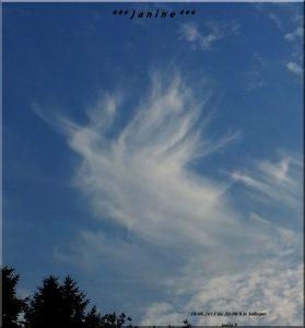 Himmelsengel am 19 016 2013