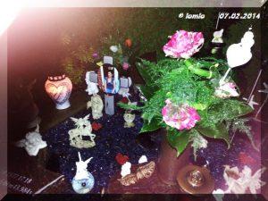 Janine 07.02.2014 6