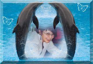 janine mit Delphinen ab